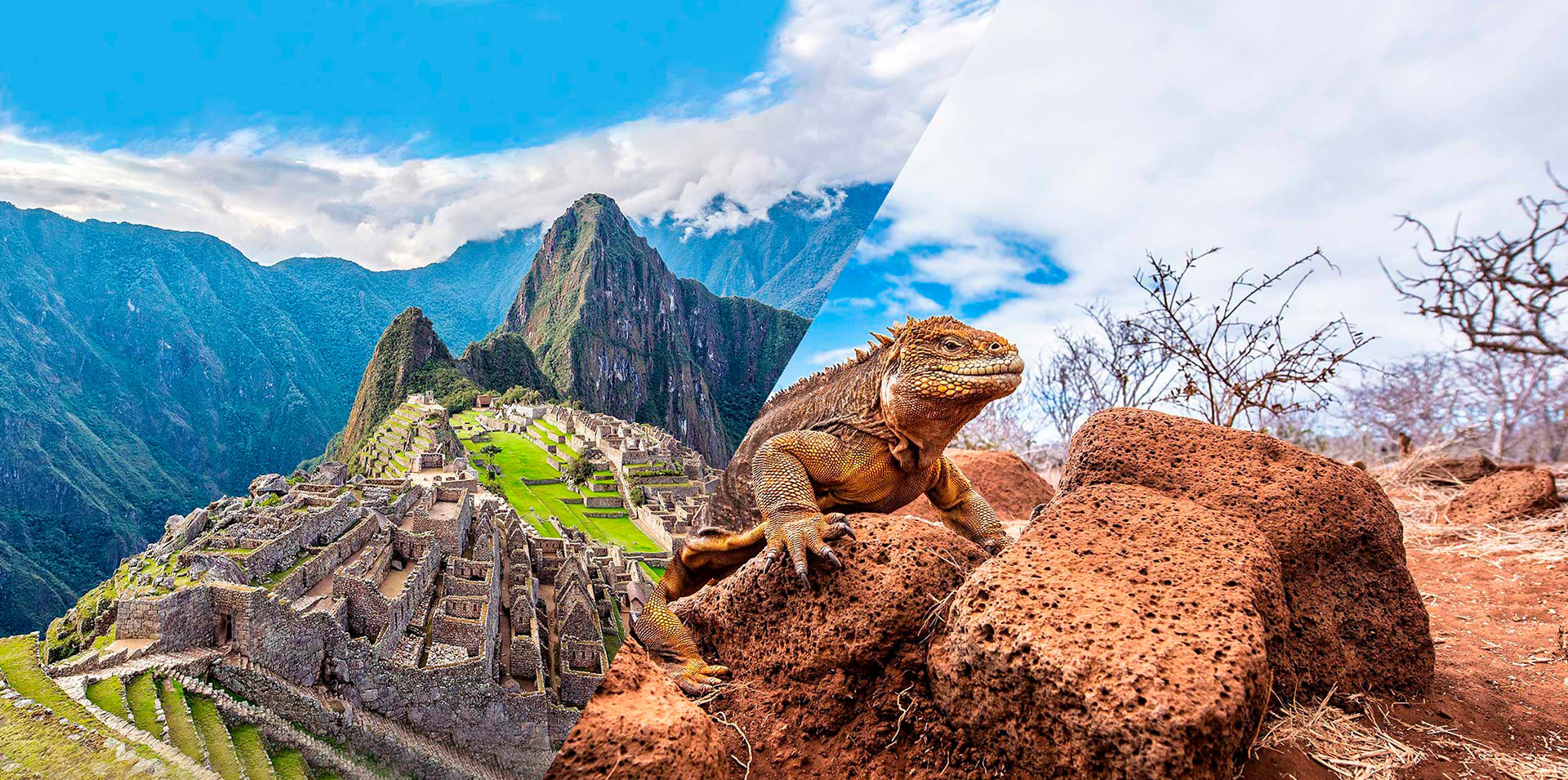 Tour por la ciudadela de Machu Picchu y las Islas Galápagos