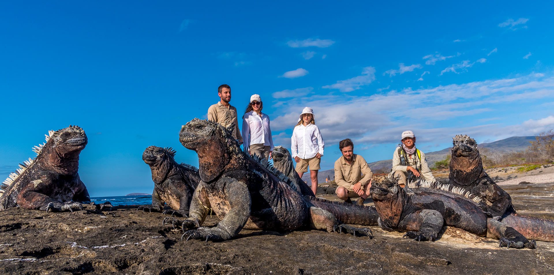 Marine Iguanas posing with tourists in the Galapagos Islands