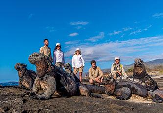 Galapagos Marine Iguanas in Puerto Egas