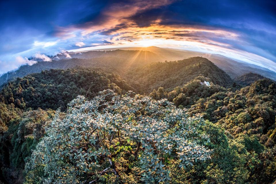 Razones para visitar sudamérica: La bioregión Choco y Mashpi Lodge