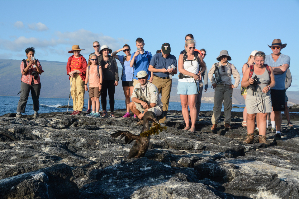 Guided excursions around the Galapagos