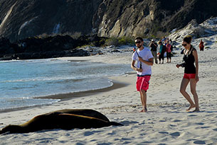 Tourists at Cerro Brujo, Galapagos
