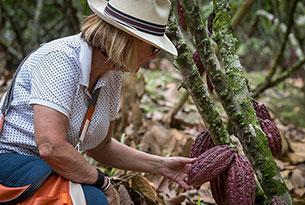 Cacao Tour in Ecuador at Hacienda La Danesa