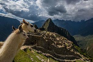 Machu Picchu & Galapagos islands: Machu Picchu tour