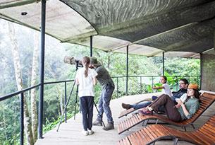 Mashpi Lodge's Life Center Balcony