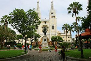Seminario Park in Guayaquil, Ecuador