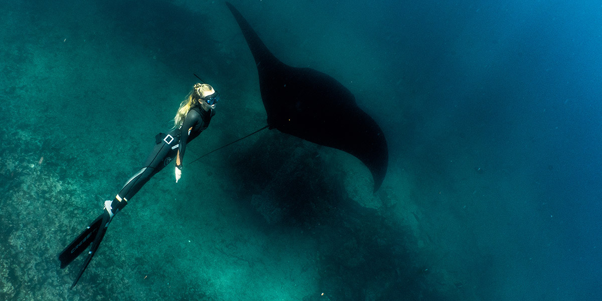 scuba-diving-galapagos-islands