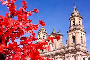 Historic Center of Bogota