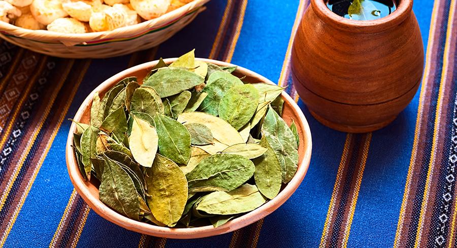 Hojas y té de coca en Perú