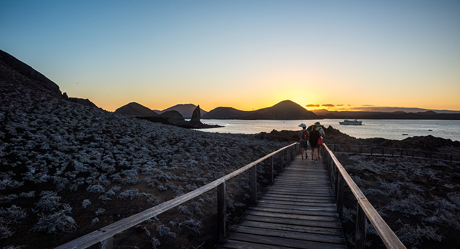 Wooden path on the island of Bartolome in the Galapagos