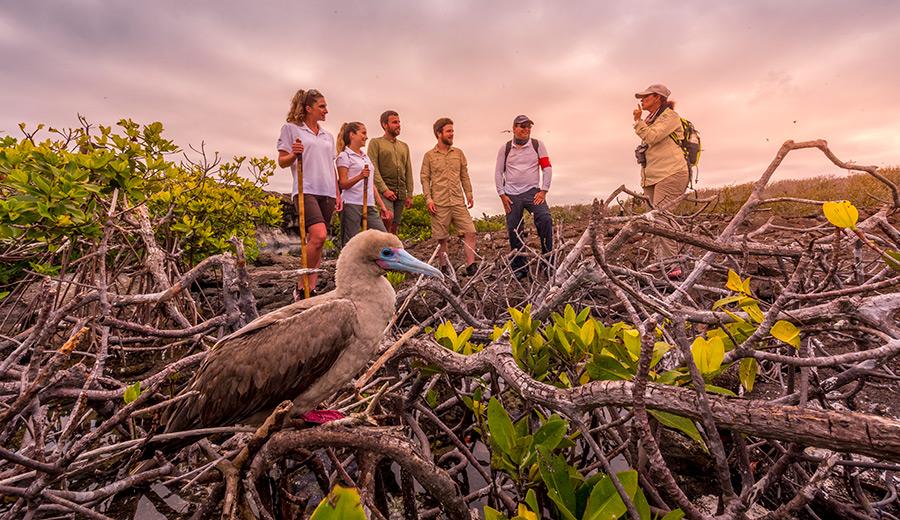 Expedition group at Genovesa Island, Galapagos