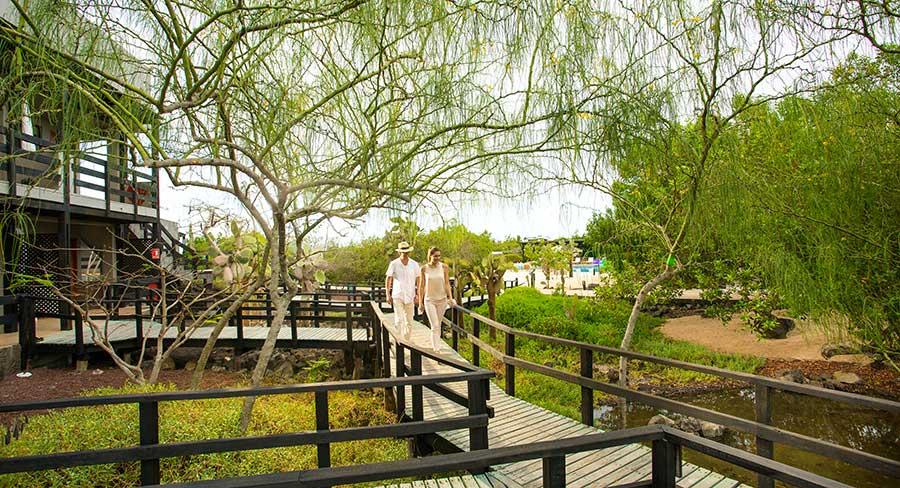 Huéspedes disfrutando el jardín en el Hotel Finch Bay