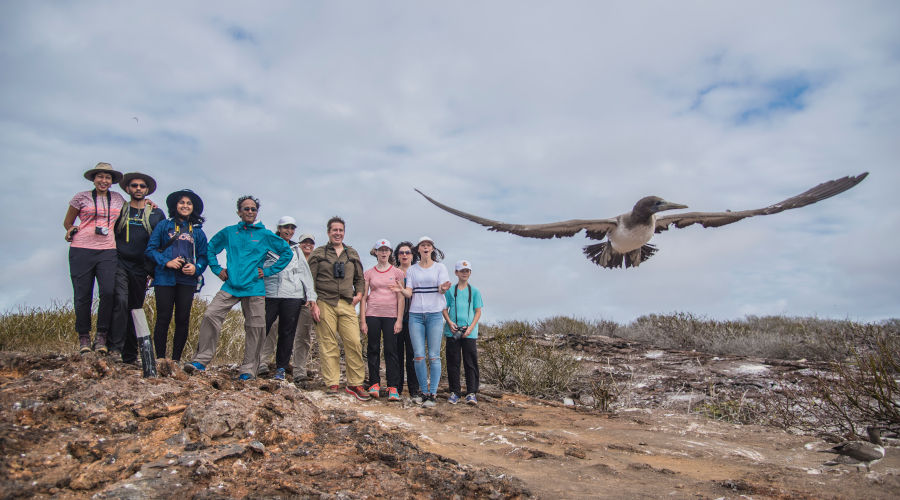 Hikers marvel at a booby's flight in the Galapagos