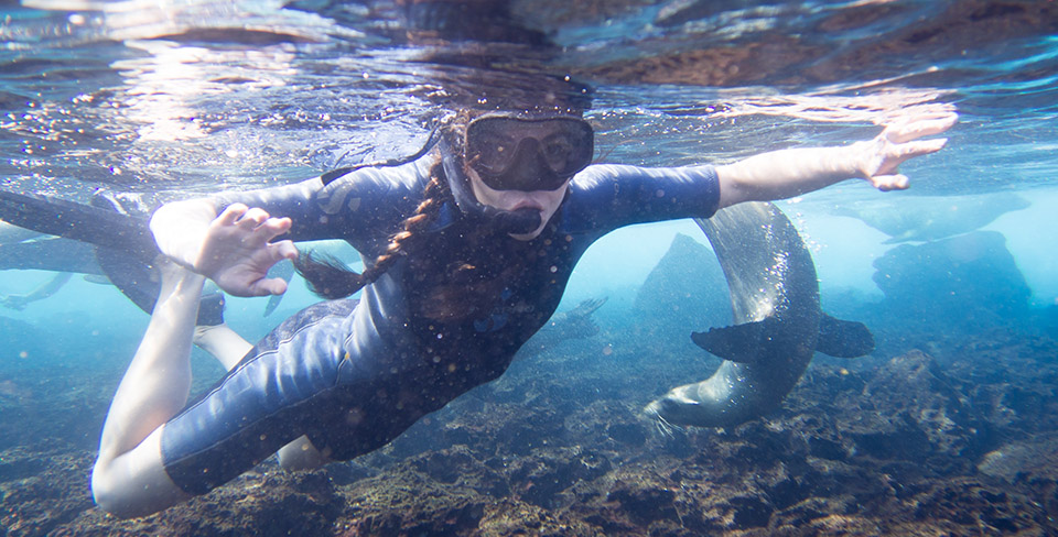 Snorkeling in the Galapagos with Sea Lions