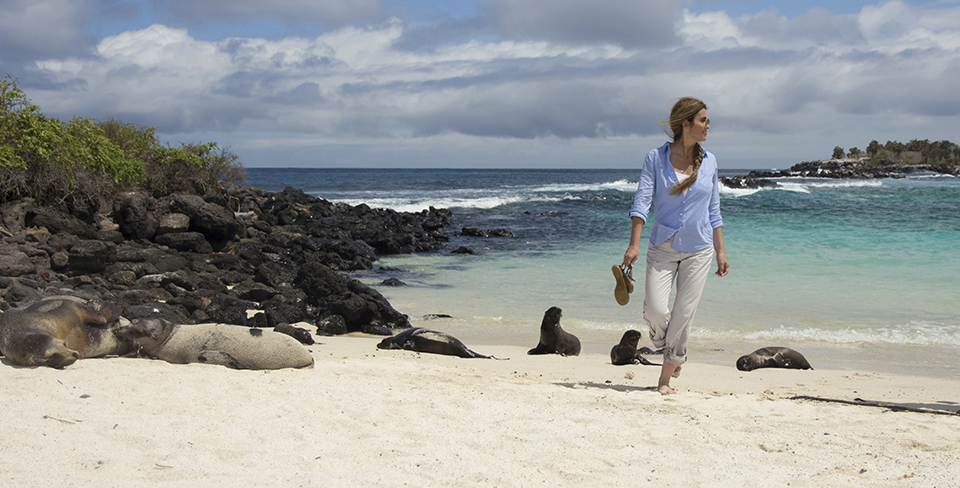 Exploring the shorelines and wildlife of the Galapagos