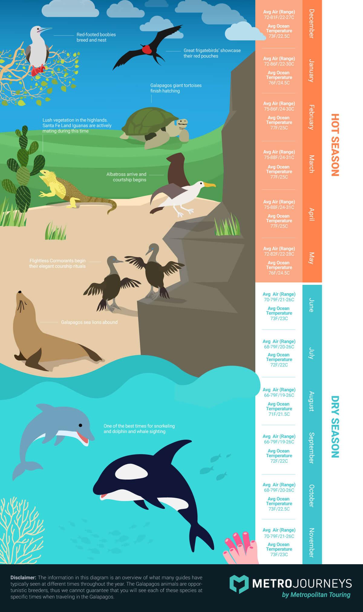 Galapagos Wildlife Activity and Weather Patterns