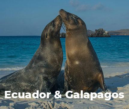 Ecuador and Galapagos Tours
