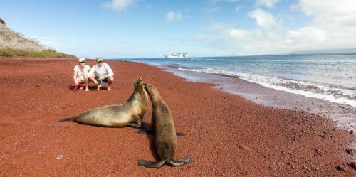 Turistas disfrutando de lobos marinos en Galápagos