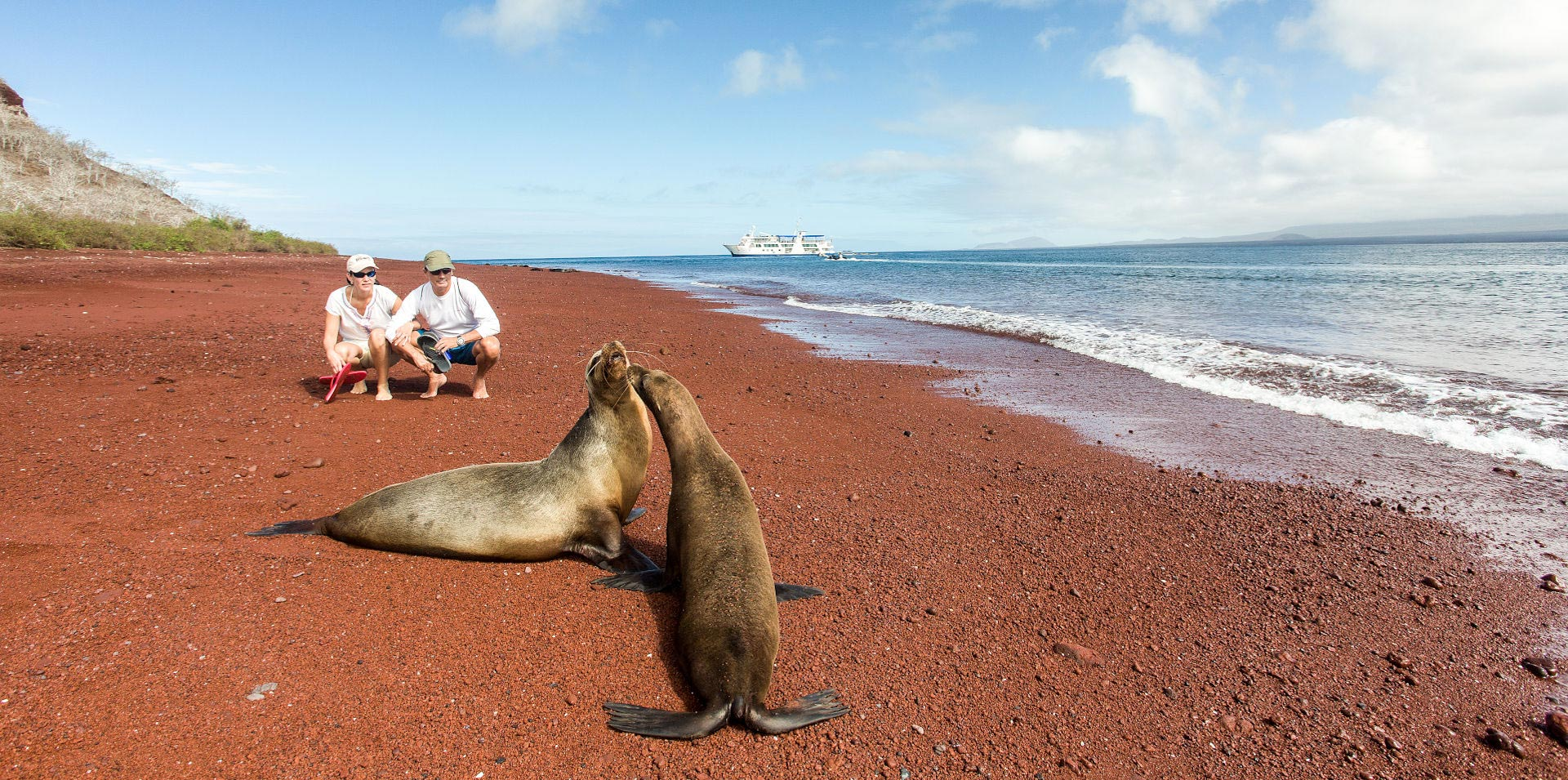 Tourists enjoying the view of Galapagos sea lions