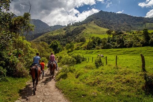 Horseback riding in Cocora Valley, Colombia