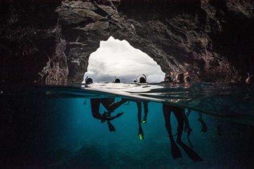 Gardner Bay Galapagos Basics