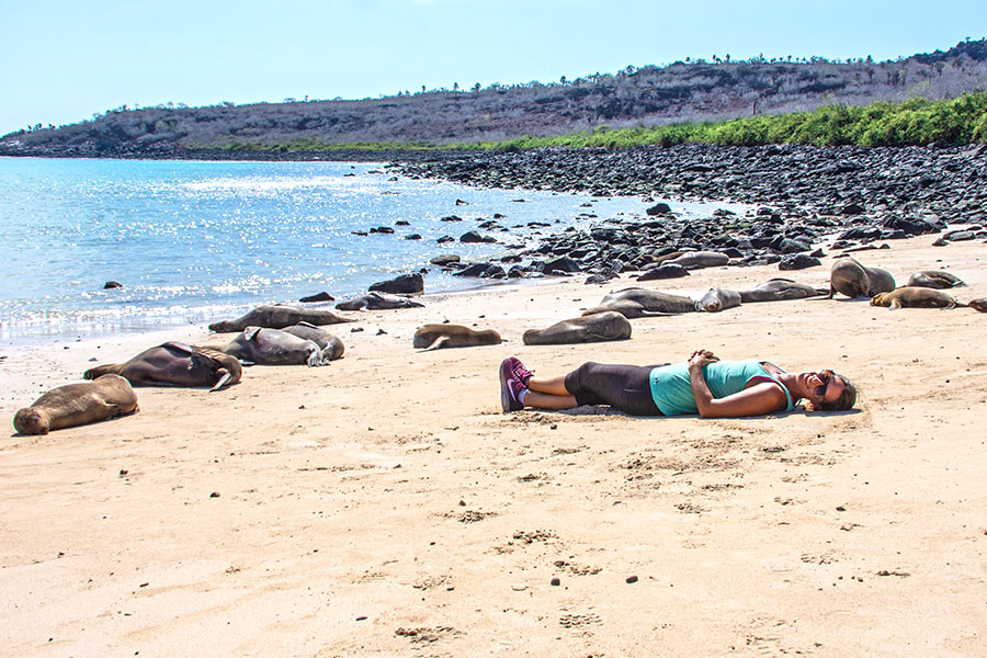 Traveler relaxing next to a Sea Lion colony in Santa Fe Island, Galapagos