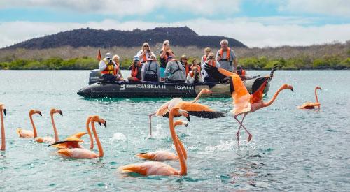 Tips de viaje hacia las Islas Galápagos